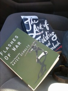 books_in_car
